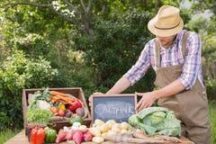 Verkauf von landwirtschaftlichen Erzeugnissen organisches veg am Markt stockfotografie