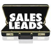 Verkaufs-Führungs-Aktenkoffer fasst neue Kunden-Aussicht-Gelegenheit ab Stockbild