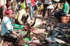 Verkaufs-Fischmarkt Kabardanga ganzer, Kolkata, Verkauf Westbengalens, Indien am 10. Januar 2019 - von frischen Meeresfrüchten au stockfotografie