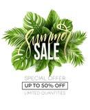 Verkaufsfahne, Plakat mit Palmblättern, Dschungelblatt und Handschriftsbeschriftung Tropischer Sommermit blumenhintergrund Vektor Stockbild