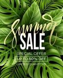 Verkaufsfahne, Plakat mit Palmblättern, Dschungelblatt und Handschriftsbeschriftung Tropischer Sommermit blumenhintergrund Vektor lizenzfreie abbildung