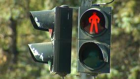 Verkeerslicht voor voetganger stock footage