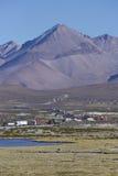 Verkeersrij op Altiplano van Noordelijk Chili Stock Foto