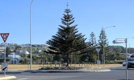 Verkeersrotonde in Australische stad, Coffs-Haven Stock Afbeelding