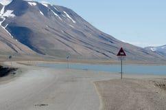 Verkeersteken ijsbeer van Svalbard stock foto's