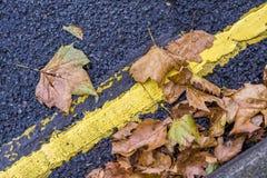 Verkeersteken met bladeren, de herfst worden behandeld die Royalty-vrije Stock Afbeeldingen