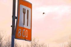 Verkeerstekenvoedsel tegen de hemel en de vogels royalty-vrije stock foto's