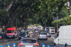 Verkehrsreiche Straße mit Baumüberdachung Stockfotos