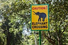 Verkehrsschild-Elefantüberfahrt Stockbilder