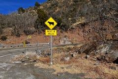 Verkehrszeichenwarnung des Viehs auf der Straße Lizenzfreie Stockbilder