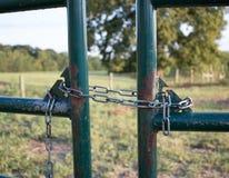 Verkettetes grünes Metalltor Lizenzfreie Stockbilder