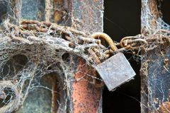 Verkettetes und padlocked Metalltor umfasst in den Spinnennetzen Stockfotografie