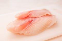 Verkleidung der Fische stockfotos