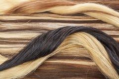 Verklig hårcloseup Foto för makro för hårtexturmodell Mänsklig europeisk förlängning för hår för kvinna` s fotografering för bildbyråer