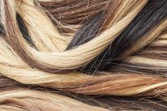 Verklig hårcloseup Foto för makro för hårtexturmodell Mänsklig europeisk förlängning för hår för kvinna` s arkivfoto