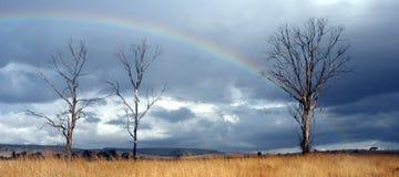 verklig regnbåge Arkivbilder