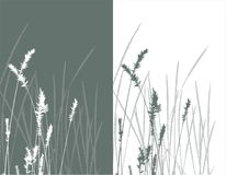 verklig silhouettevektor för gräs Arkivfoto