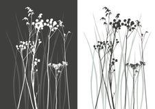 verklig silhouettevektor för gräs Arkivbilder