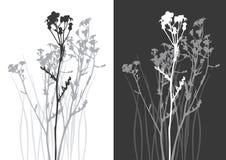 verklig silhouettevektor för gräs Arkivbild