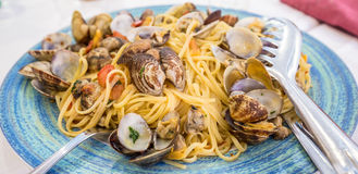 Verklig spagettiallevongole i Naples, Italien Fotografering för Bildbyråer