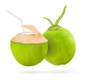 Verklig vattendrink för kokosnöt 3d med det vita plast- röret Royaltyfri Bild