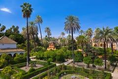 Verkliga Alcazarträdgårdar i Seville Spanien Royaltyfri Foto