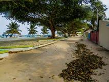 Verkliga Maldiverna arkivbilder