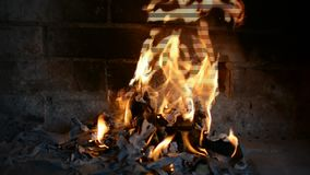 Verkligt brinnande trä arkivfilmer