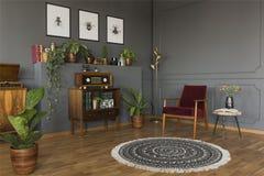 Verkligt foto av en grå vardagsrum för tappning med en röd fåtöljsta royaltyfri bild