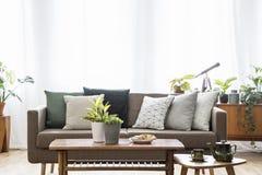 Verkligt foto av en soffa med kuddar som står bak tabeller i bri arkivfoton