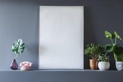 Verkligt foto av en vit, tomt affischanseende bredvid växter i v arkivbilder