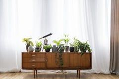 Verkligt foto av ett träskåp med växter, kruka och teleskop s arkivfoto