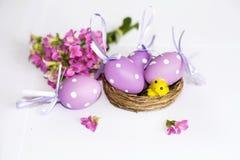 Verkligt rede med purpurfärgade easter ägg och gulinghönor Royaltyfria Bilder