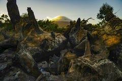 Verkoold hout met vulkaanachtergrond royalty-vrije stock fotografie