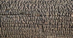 Verkoolde houten straal stock foto's