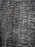 Verkoolde houten textuur Stock Foto's