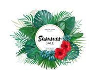 Verkoop De ronde tropische bladeren van de de zomerverkoop freme Tropische bloemen, bladeren en installatiesachtergrond Royalty-vrije Stock Afbeelding