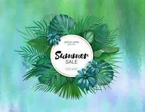 Verkoop De ronde tropische bladeren van de de zomerverkoop freme Tropische bloemen, bladeren en installatiesachtergrond stock illustratie
