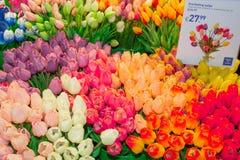 Verkoop van tulpen in de luchthaven Schiphol van Amsterdam stock afbeelding