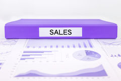 Verkooprapporten en marketing grafiekanalyse van bedrijfsinkomen Royalty-vrije Stock Foto