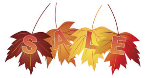 Verkooptekst op de Esdoornbladeren van Dalingskleuren Royalty-vrije Stock Foto's