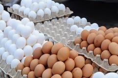 Verkopende eieren van het landbouwbedrijf Stock Afbeelding