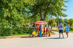 Verkopende gesponnen suiker, candyfloss, in het park van Moskou Gorky stock afbeeldingen