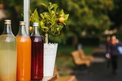 Verkopende verfrissende eigengemaakte limonade Drie flessen van limonadetribune op een rij Bes, sinaasappel en citroen met peperm Royalty-vrije Stock Fotografie