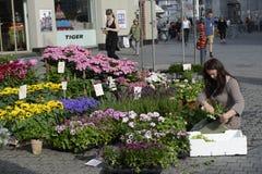 Verkoper van bloemen Royalty-vrije Stock Foto's