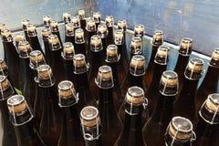 Verkorkte Flaschen in einem Fach Stockbild