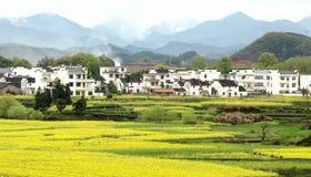 Verkrachting in de dorpen stock foto