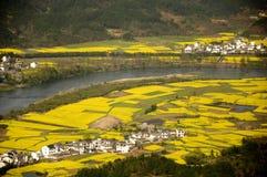 Verkrachting en landelijk pastoraal landschap Royalty-vrije Stock Afbeeldingen