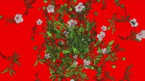 verlässt üppiges Blumenblatt der Blume 4k Ernten Sträuche Buschbetriebsgras wachsender Hintergrund stock abbildung
