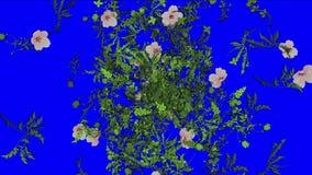 verlässt üppiges Blumenblatt der Blume 4k Ernten Sträuche Buschbetriebsgras wachsender Hintergrund vektor abbildung